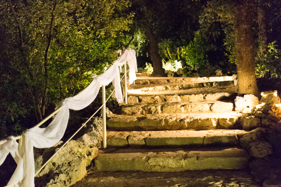 Carla lembo wedding